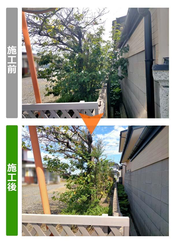 隣地との境界からはみ出している植木の枝切り