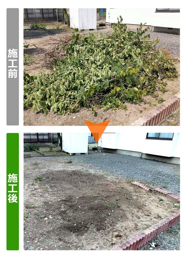 石巻便利屋フォーカスのご実家の庭手入れ事例(庭木手入れ後の剪定枝は回収処分させて頂きました)